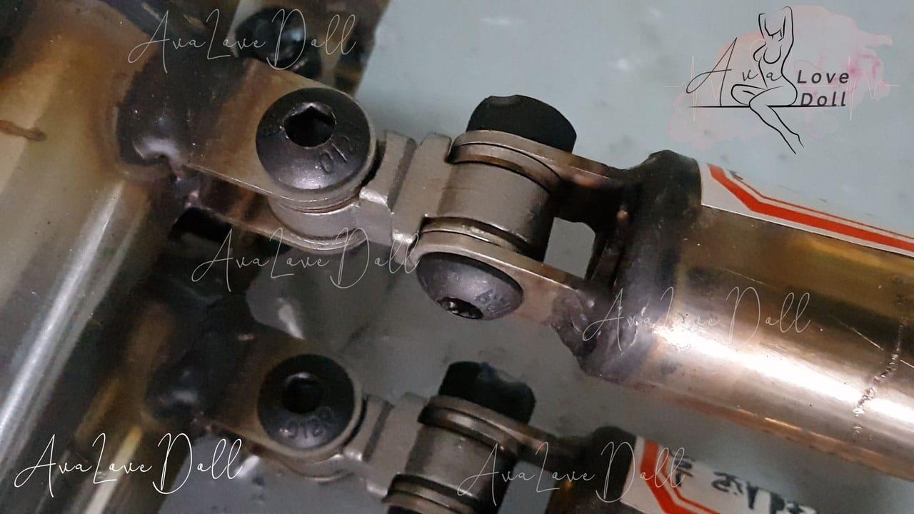 Zoom sur les deux articulations de l'épaule sur un squelette EVO